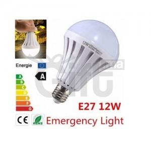 Ampoule d'Urgence Intelligente LED