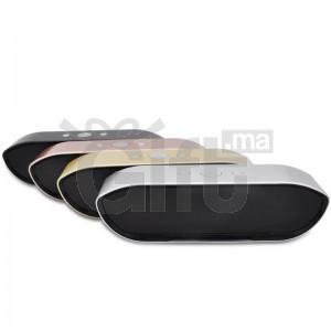Mini Enceinte Bluetooth Portable - CY-01