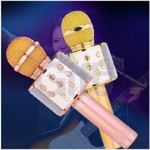 Microphone Bluetooth Sans Fil Haut Parleur Pour KARAOKÉ - WS-858