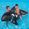 baleine flotante