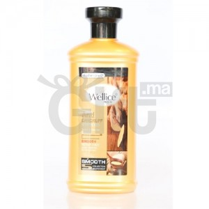 Wellice Pro-V Shampooing Anti-Pelliculaire au Gingembre